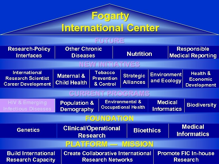 Fogarty International Center FUTURE Research-Policy Interfaces Other Chronic Diseases Responsible Medical Reporting Nutrition NEW