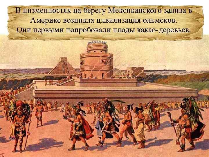 В низменностях на берегу Мексиканского залива в Америке возникла цивилизация ольмеков. Они первыми попробовали