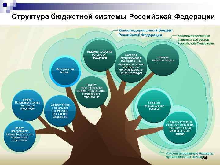 Структура бюджетной системы Российской Федерации 24