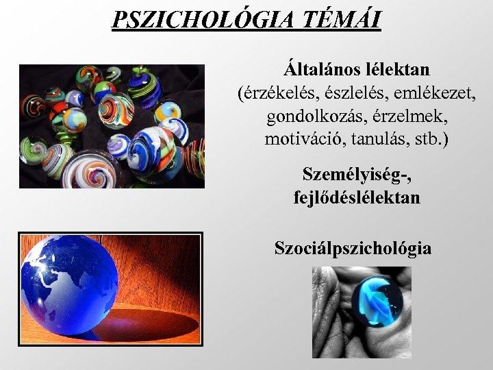 PSZICHOLÓGIA TÉMÁI Általános lélektan (érzékelés, észlelés, emlékezet, gondolkozás, érzelmek, motiváció, tanulás, stb. ) Személyiség-,