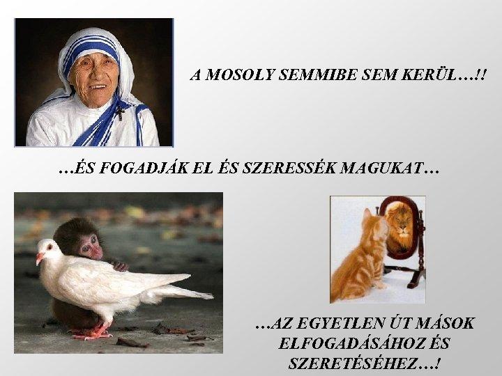 A MOSOLY SEMMIBE SEM KERÜL…!! …ÉS FOGADJÁK EL ÉS SZERESSÉK MAGUKAT… …AZ EGYETLEN ÚT
