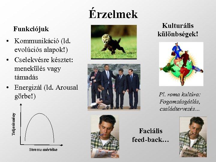 Érzelmek Funkciójuk Teljesítmény • Kommunikáció (ld. evolúciós alapok!) • Cselekvésre késztet: menekülés vagy támadás