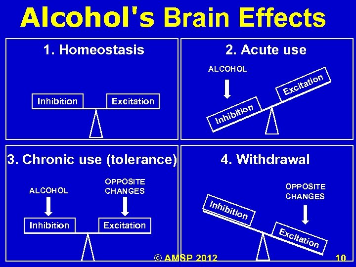 Alcohol's Brain Effects 1. Homeostasis 2. Acute use ALCOHOL Inhibition on tati ci Ex