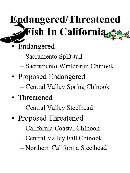 Endangered/Threatened Fish In California • Endangered – Sacramento Split-tail – Sacramento Winter-run Chinook •