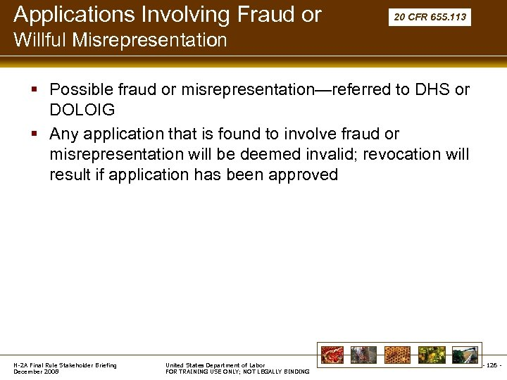 Applications Involving Fraud or 20 CFR 655. 113 Willful Misrepresentation § Possible fraud or