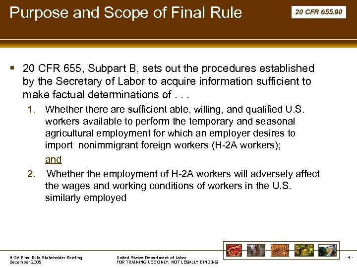 Purpose and Scope of Final Rule 20 CFR 655. 90 § 20 CFR 655,