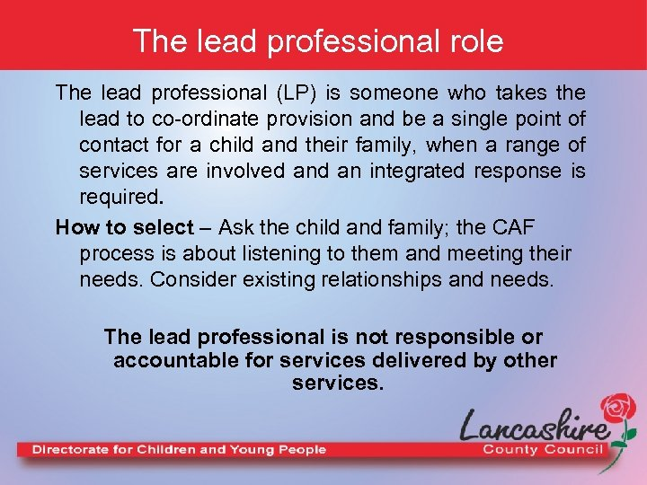 The lead professional role The lead professional (LP) is someone who takes the lead