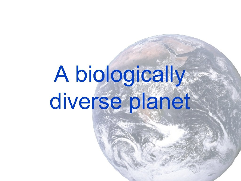 A biologically diverse planet