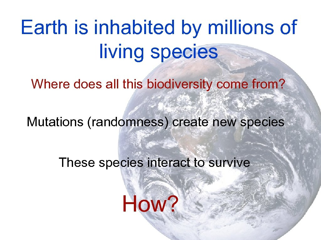 Earth is inhabited by millions of living species Where does all this biodiversity come