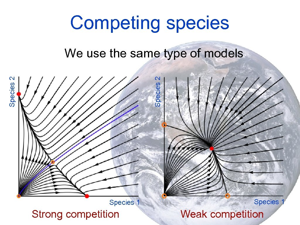 Competing species Species 2 We use the same type of models Species 1 Strong