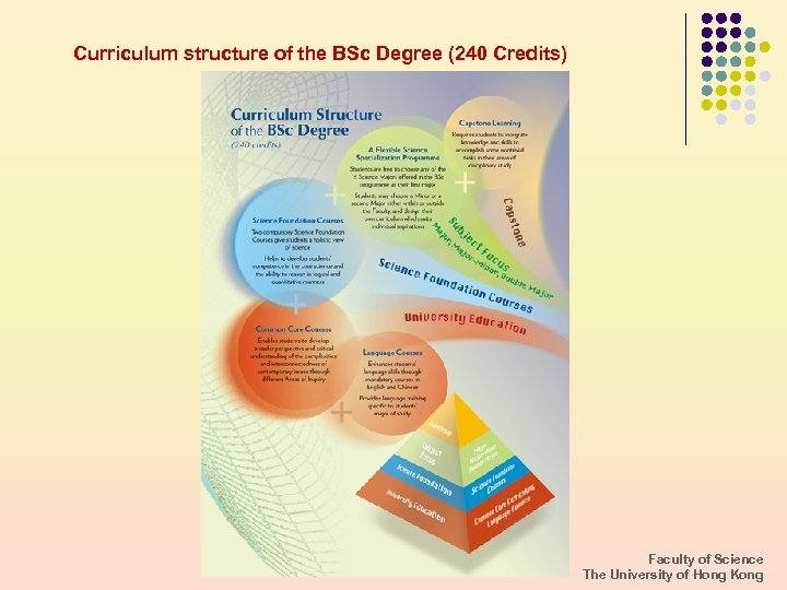 Curriculum structure of the BSc Degree (240 Credits) Faculty of Science The University of