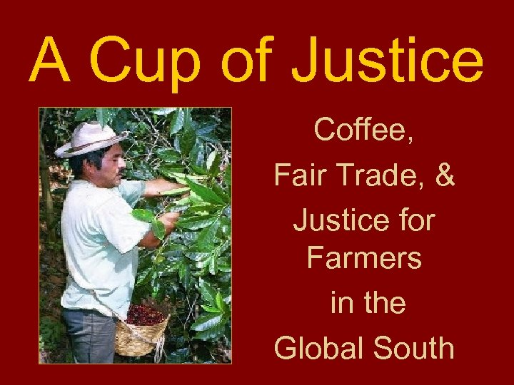 A Cup of Justice Coffee, Fair Trade, & Justice for Farmers in the Global