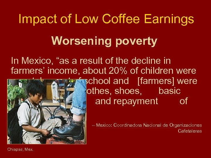 """Impact of Low Coffee Earnings Worsening poverty In Mexico, """"as a result of the"""