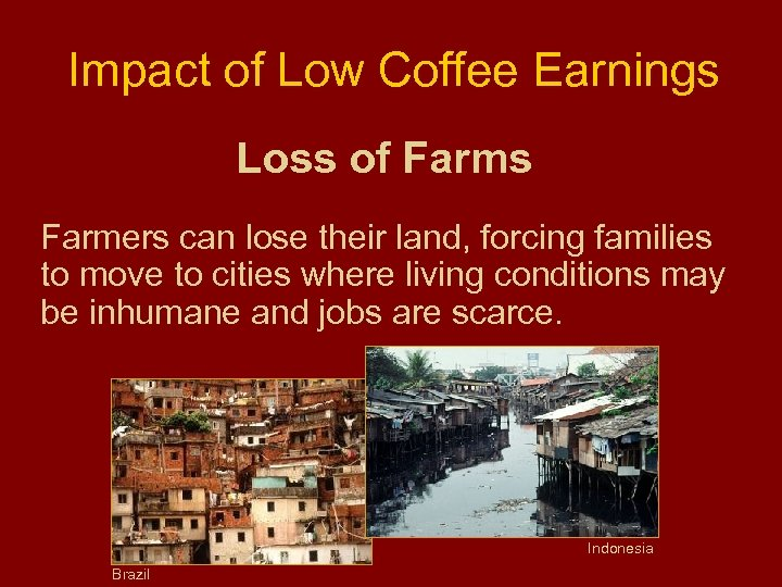 Impact of Low Coffee Earnings Loss of Farms Farmers can lose their land, forcing