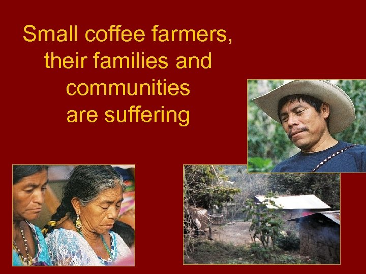 Small coffee farmers, their families and communities are suffering
