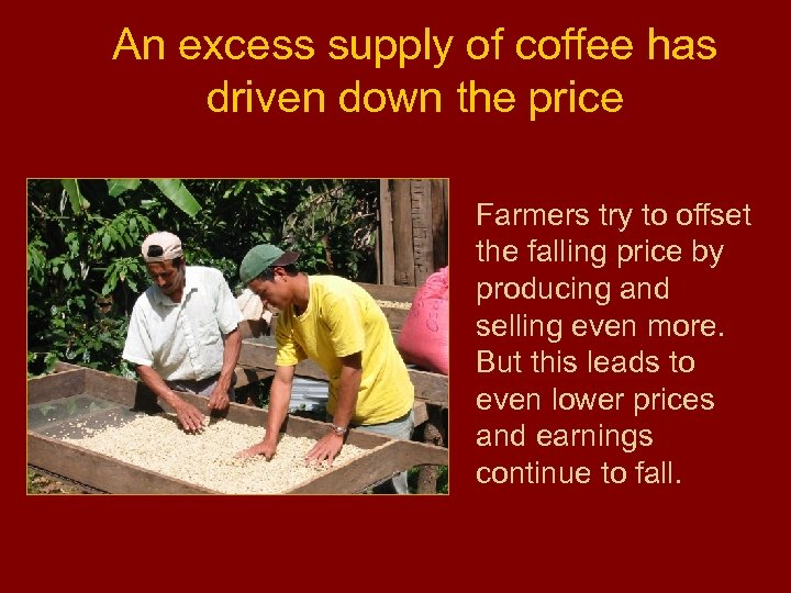 An excess supply of coffee has driven down the price Farmers try to offset