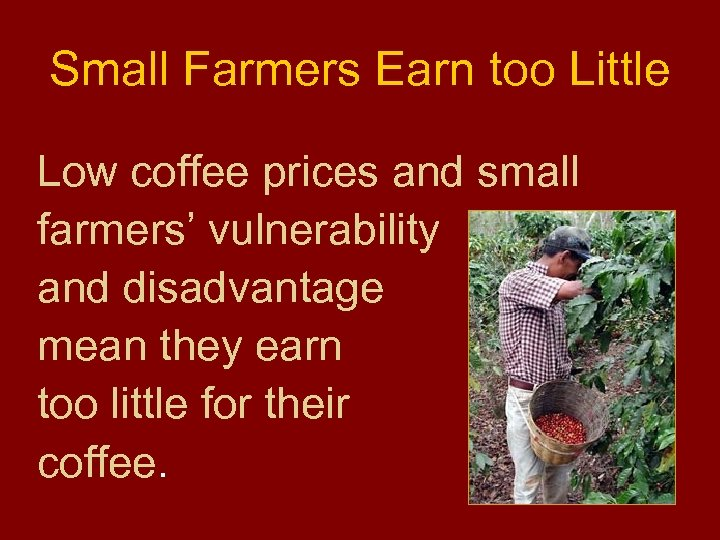 Small Farmers Earn too Little Low coffee prices and small farmers' vulnerability and disadvantage