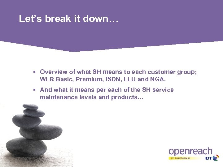 Let's break it down… § Overview of what SH means to each customer group;