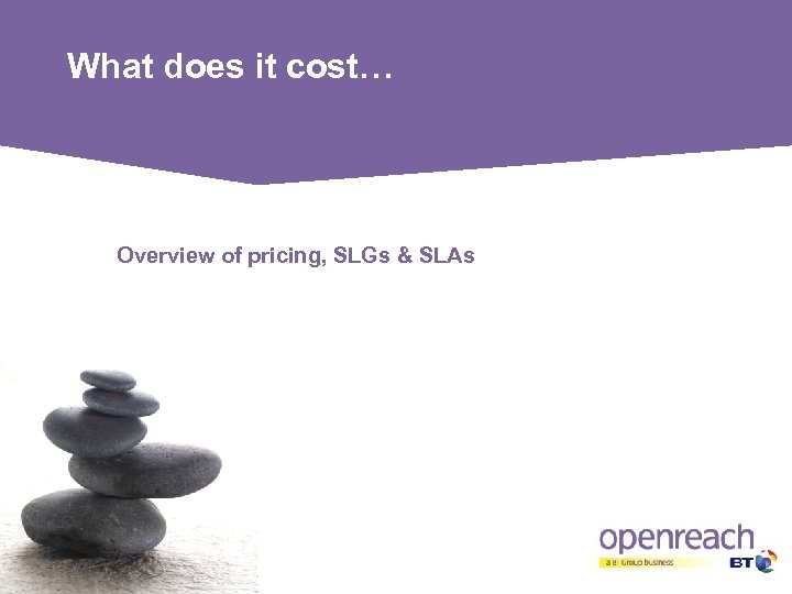 What does it cost… Overview of pricing, SLGs & SLAs