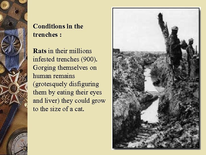 Conditions in the trenches : Rats in their millions infested trenches (900). Gorging themselves