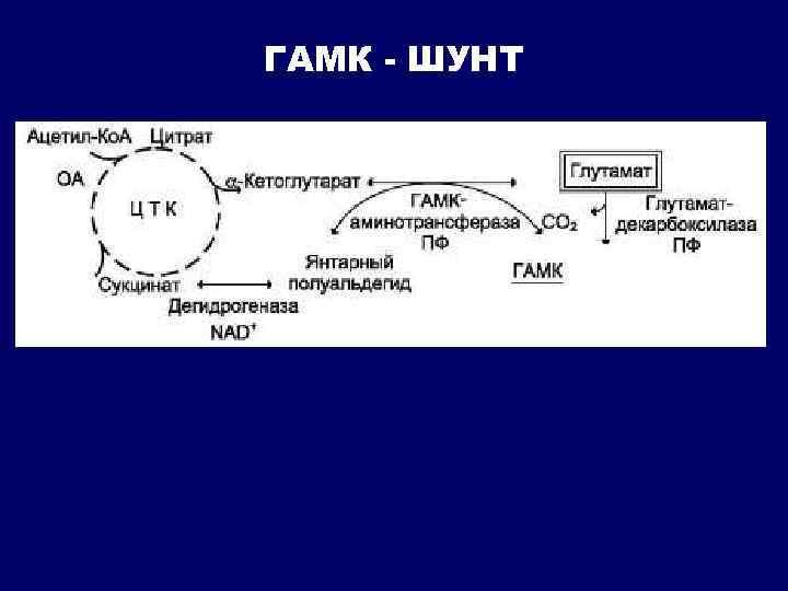 ГАМК - ШУНТ