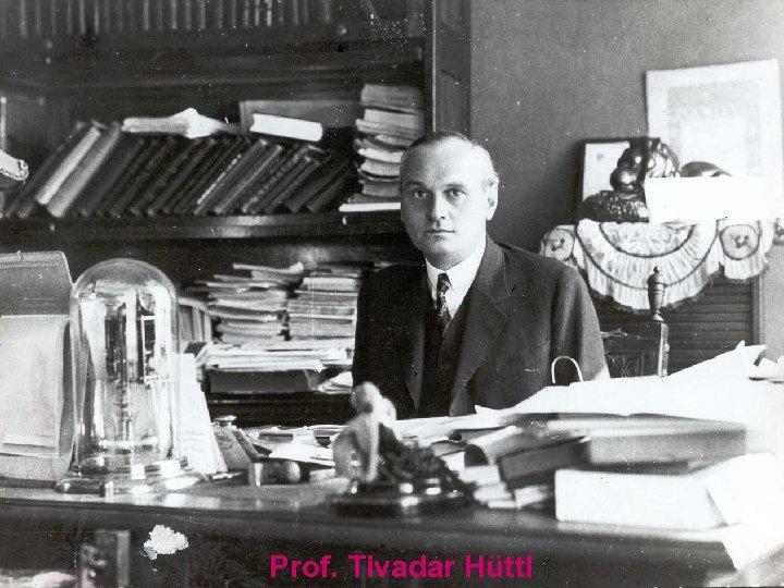 Prof. Tivadar Hüttl