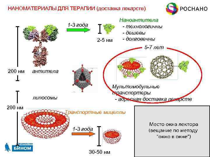 НАНОМАТЕРИАЛЫ ДЛЯ ТЕРАПИИ (доставка лекарств) 1 -3 года 2 -5 нм Наноантитела - технологичны