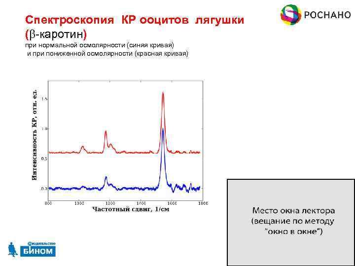 Спектроскопия КР ооцитов лягушки (b-каротин) при нормальной осмолярности (синяя кривая) и при пониженной осмолярности