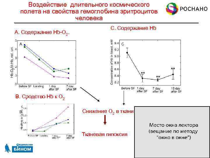 Воздействие длительного космического полета на свойства гемоглобина эритроцитов человека A. Содержание Hb-O 2. A
