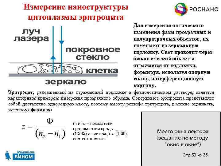 Измерение наноструктуры цитоплазмы эритроцита Для измерения оптического изменения фазы прозрачных и полупрозрачных объектов, их