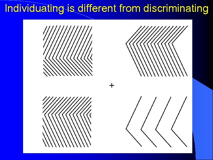 Individuating is different from discriminating