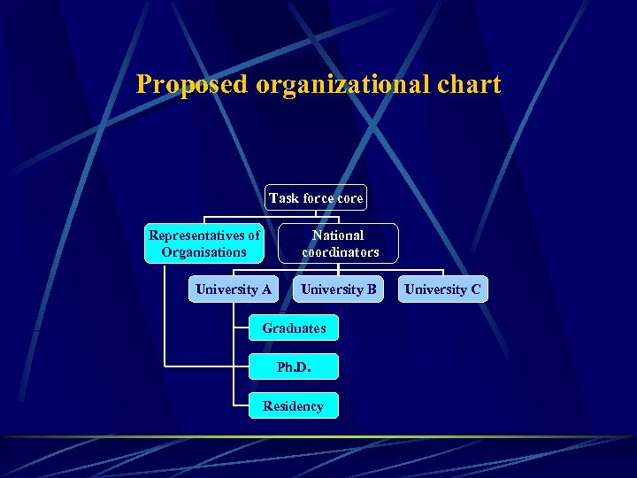 Proposed organizational chart Task force core Representatives of Organisations National coordinators University A University