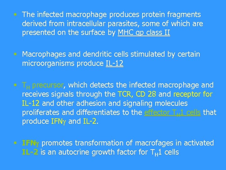 § The infected macrophage produces protein fragments derived from intracellular parasites, some of which