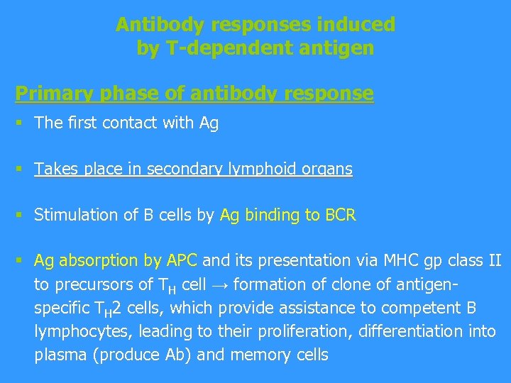 Antibody responses induced by T-dependent antigen Primary phase of antibody response § The first