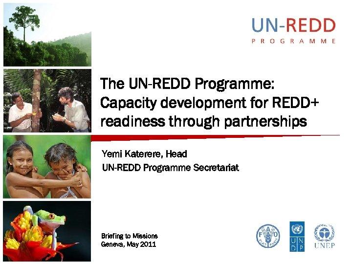 The UN-REDD Programme: Capacity development for REDD+ readiness through partnerships Yemi Katerere, Head UN-REDD