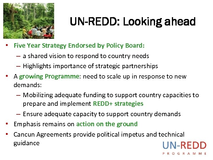 UN-REDD: Looking ahead • Five Year Strategy Endorsed by Policy Board: – a shared