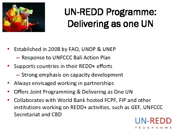 UN-REDD Programme: Delivering as one UN • Established in 2008 by FAO, UNDP &