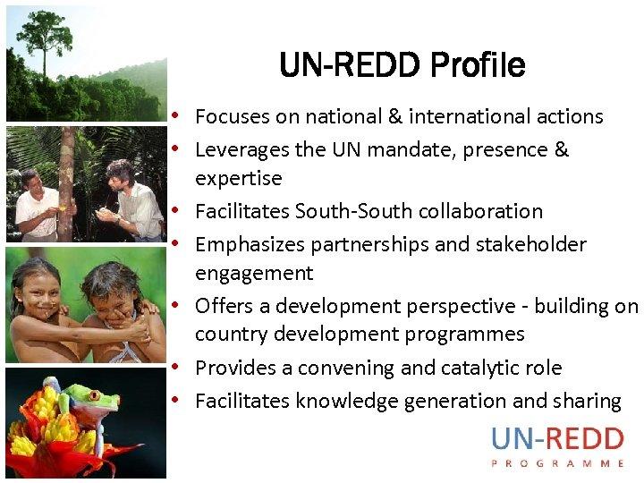 UN-REDD Profile • Focuses on national & international actions • Leverages the UN mandate,