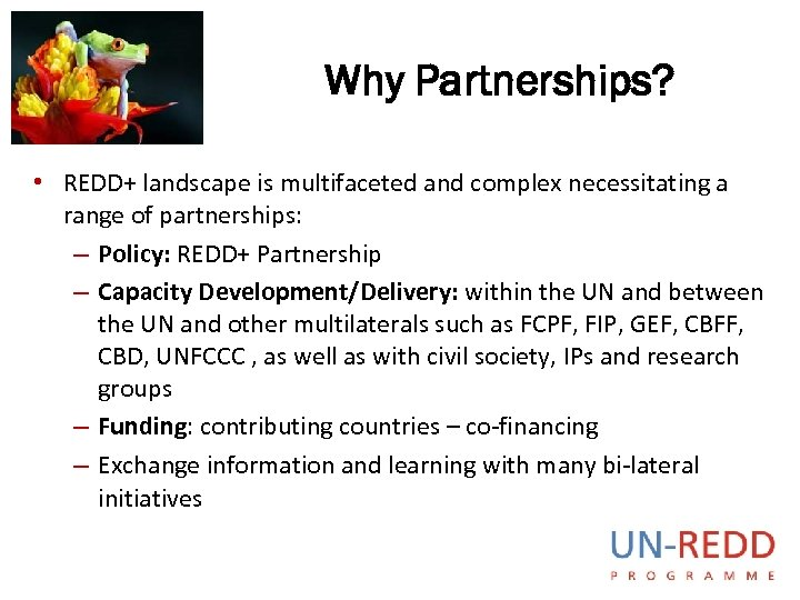 Why Partnerships? • REDD+ landscape is multifaceted and complex necessitating a range of partnerships: