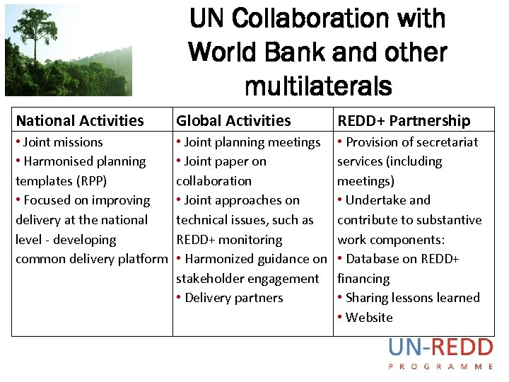 UN Collaboration with World Bank and other multilaterals National Activities Global Activities REDD+ Partnership