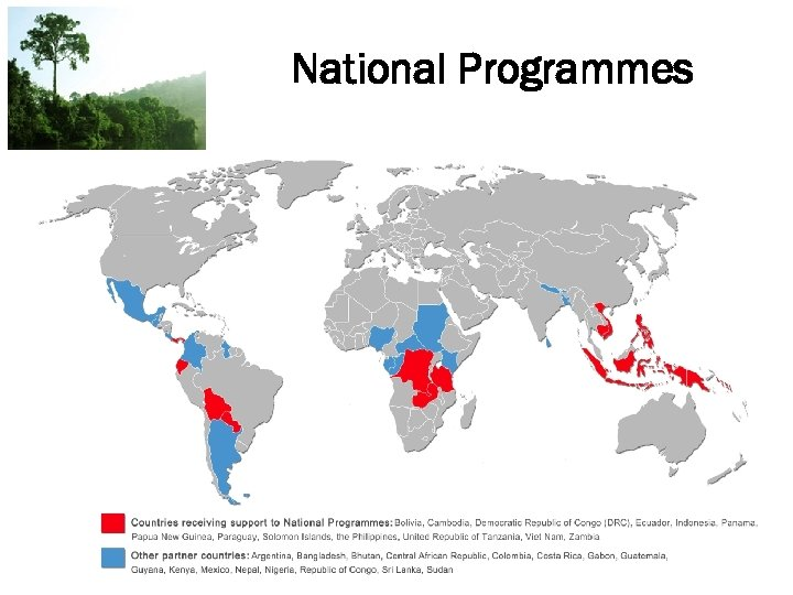National Programmes