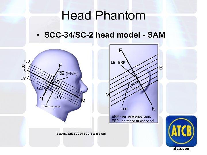 Head Phantom • SCC-34/SC-2 head model - SAM F +30 LE ERP F RE