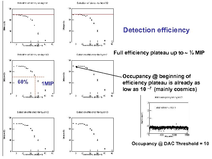 Detection efficiency Full efficiency plateau up to ½ MIP 60% 1 MIP Occupancy @