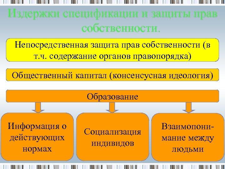 Издержки спецификации и защиты прав собственности. Непосредственная защита прав собственности (в т. ч. содержание