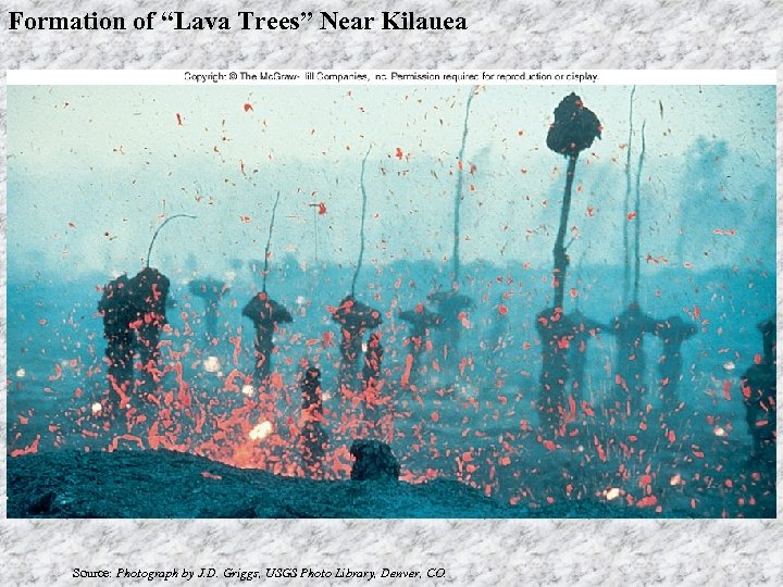 """Formation of """"Lava Trees"""" Near Kilauea Source: Photograph by J. D. Griggs, USGS Photo"""