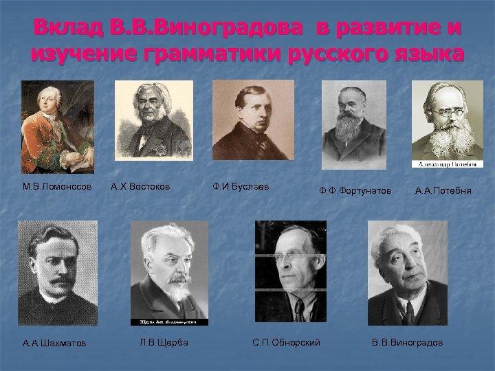 Вклад В. В. Виноградова в развитие и изучение грамматики русского языка М. В. Ломоносов