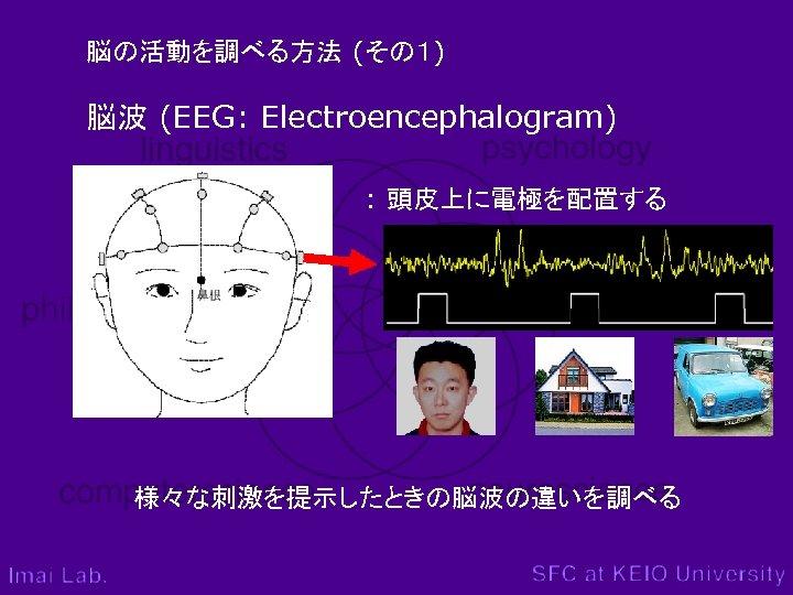 脳の活動を調べる方法 (その1) 脳波 (EEG: Electroencephalogram) : 頭皮上に電極を配置する 様々な刺激を提示したときの脳波の違いを調べる