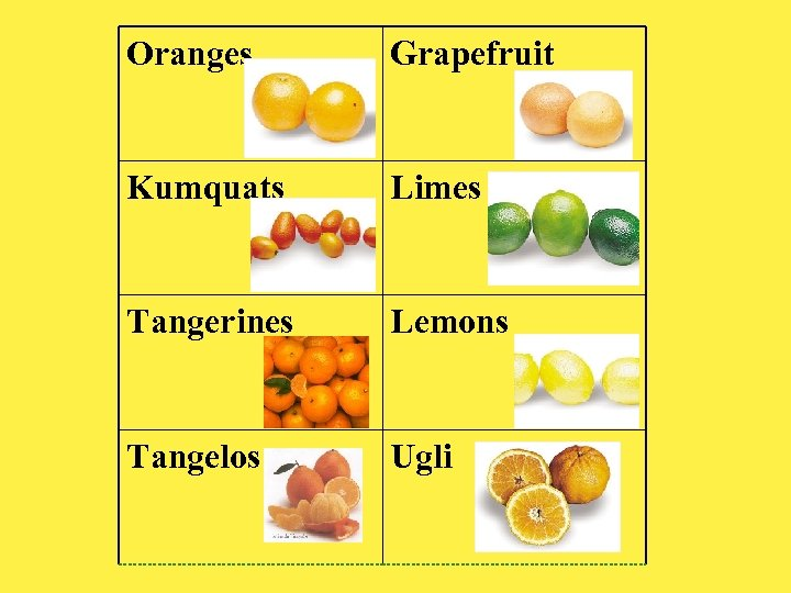 Oranges Grapefruit Kumquats Limes Tangerines Lemons Tangelos Ugli