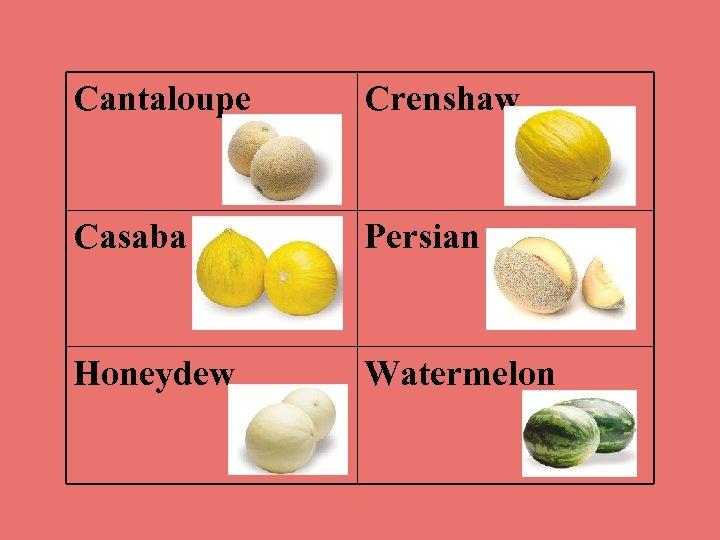 Cantaloupe Crenshaw Casaba Persian Honeydew Watermelon