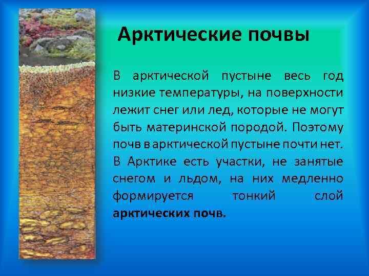 Войска пво российской федерации может